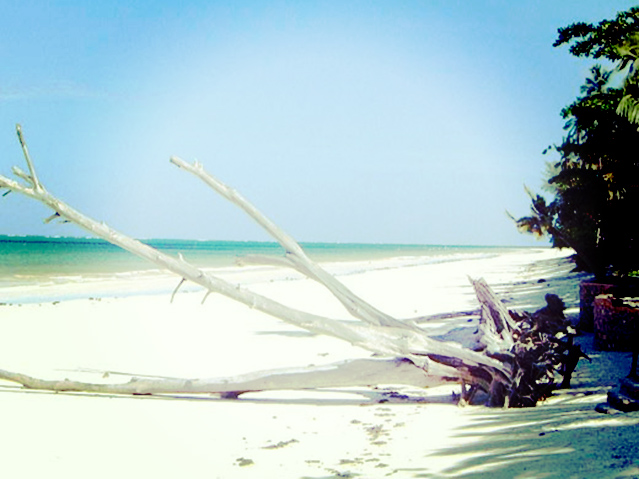 diani-beach_luxury